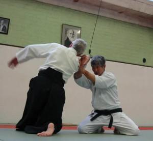 10.Techniques.Hanmihandachiwaza
