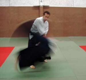 10.Techniques.Oyowaza2
