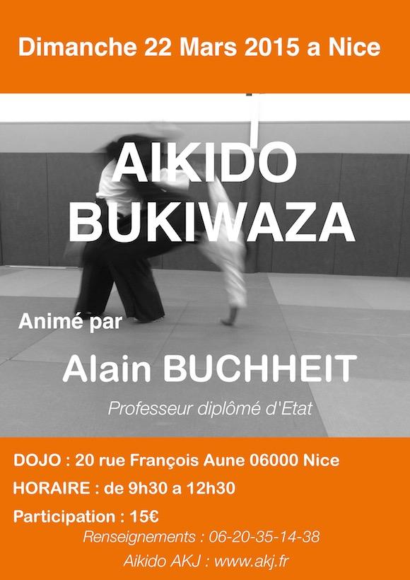 Aikido-mars-2015