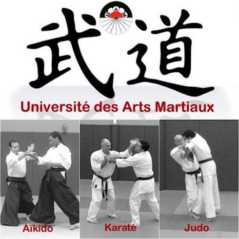 Les 3 disciplines, Aïkido, Karate et Judo.