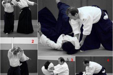 Les 4 étapes de shihonage omote.